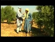Al-toufan-11