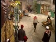 Ayam-shamiyeh-13